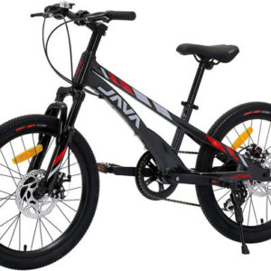 0104329_java-vertigo-20-inch-kids-bike
