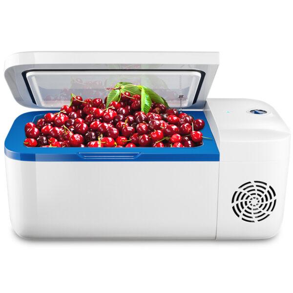 Yingdeer Indell H12 12L Car Refrigerator
