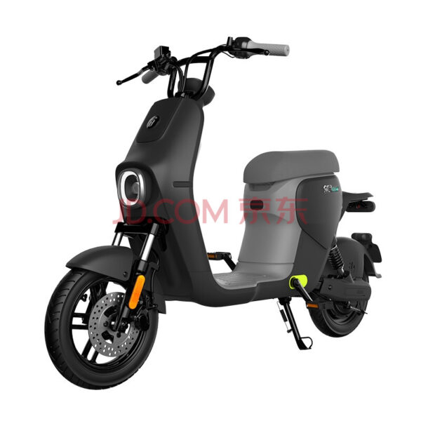 Ninebot B30C Scooter